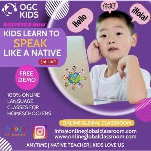 Online Global Classroom, LLC